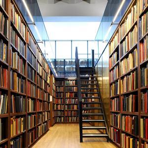 Библиотеки Бурмакино